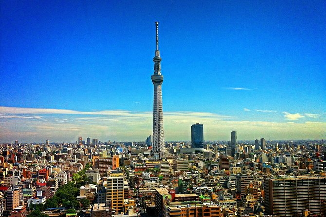 Private and personalized experience: see Tokyo with a local