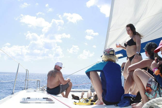 42 ft Private Catamaran Excursion