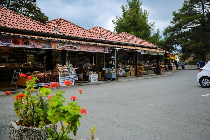 Excursion TROODOS - KYKKOS from Limassol