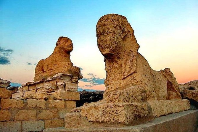 Full Day Tours to Fayoum Oasis, Lake Qarun Attractions & Sightseeing