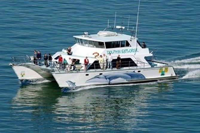 Explorer Cruiser Punta Cana