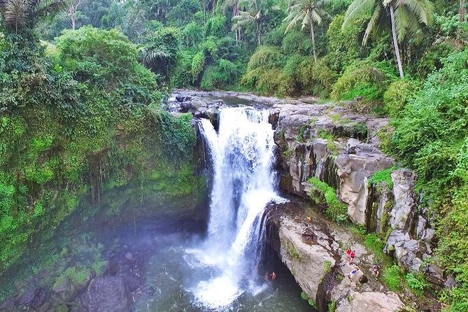 Ubud Bali : Monkey Forest - Rice Terrace - Water Temple - Waterfall