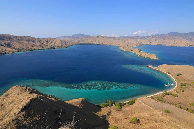 One day Komodo trip with Bintang Komodo Tours