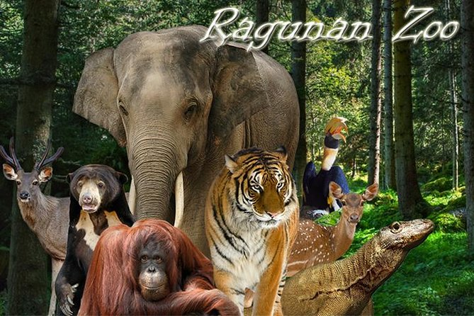 Ragunan Zoo Private Tour with guides (beautiful natural and animal habitat)