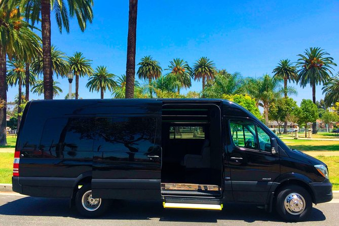 Private Group Executive Transportation - Mercedes Benz Sprinter High Roof Long photo 2