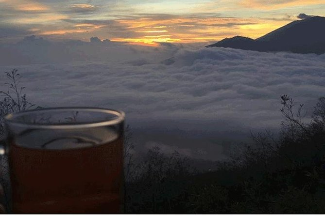 Private Tour: Bali Mount batur Sunrise Trekking and coffe Platantion