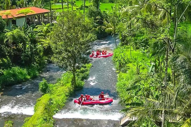 Bali Activity: White Water Rafting and Bali Swing Packages
