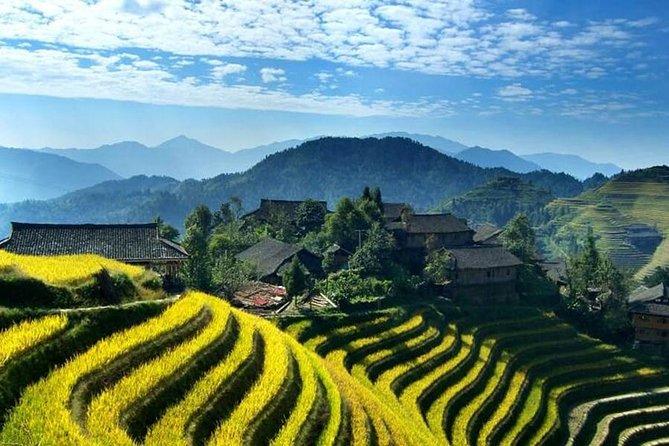 1 Day - Longji Rice Terraces - Hiking Tour
