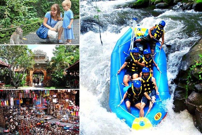 Telaga Waja White Water Rafting and Ubud Art Village Tour
