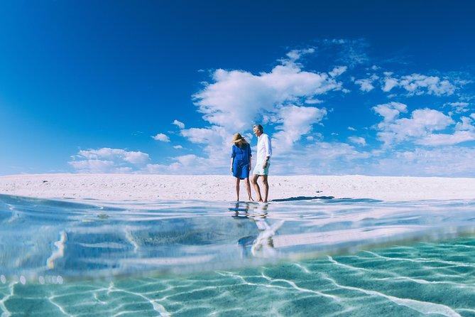 4-Day Coastal Loop via Monkey Mia Wild Dolphins Kalbarri Pinnacles Perth Return