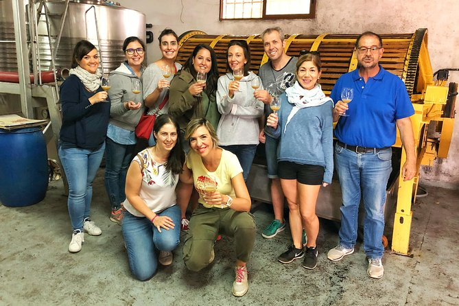 Amazing Half-Day Wine Tour near Madrid - Rated 'Unique and Personalized'