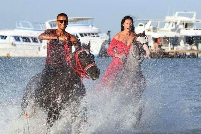 Two Hours Horse or Camel Riding one Hour desert & one Hour in the Sea- Hurghada