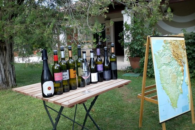 A Sample Of Wine, A Sample Of Istria - A Short But Fulfilled Program