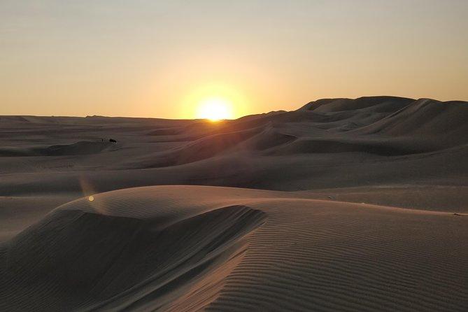 (Private Tour)Sunrise Desert Safari Dune Bashing, Camel Ride, Sand Boarding .