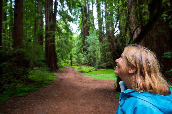 Muir Woods Expedition Tour of Coastal Redwoods photo 4
