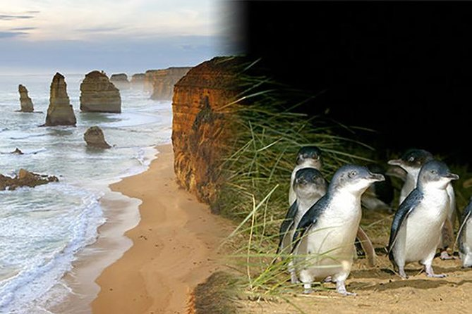 Melbourne supereconômica: Great Ocean Road e Phillip Island