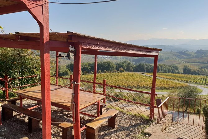 Private Half-Day Wine and Food in Chianti Classico from Florence