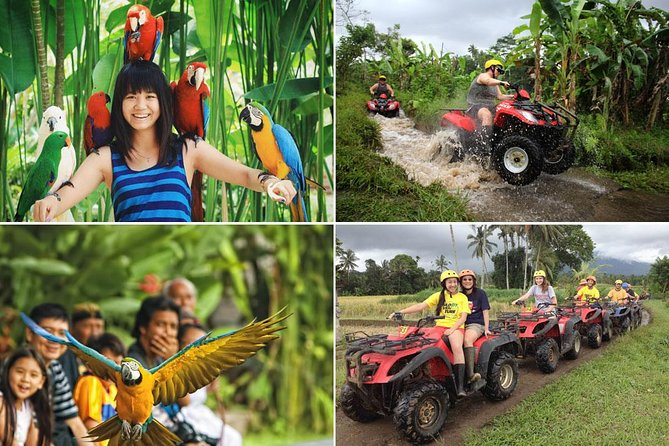 Bali ATV Ride and Bird Park Packages