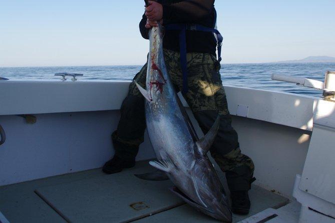 Big Game Fishing Hvar