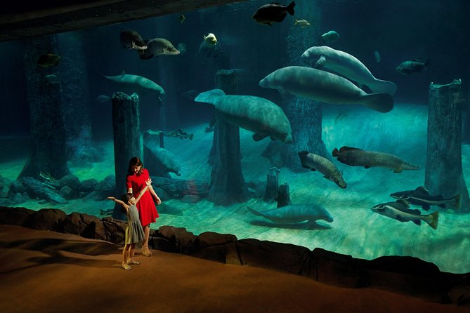 Singapore Super Saver: Night Safari and River Safari