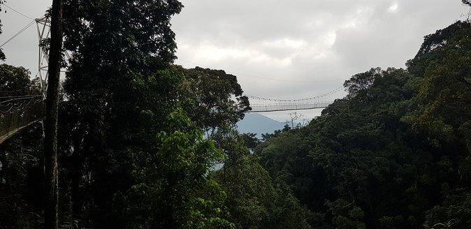 Two-day Nyungwe Canopy and Kivu Lake Adventure photo 4