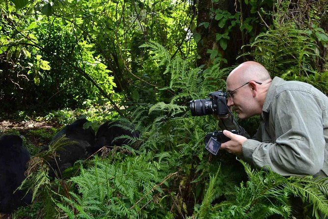 6 Day Uganda Safari in Murchison Falls and Bwindi Impenetrable Park photo 14