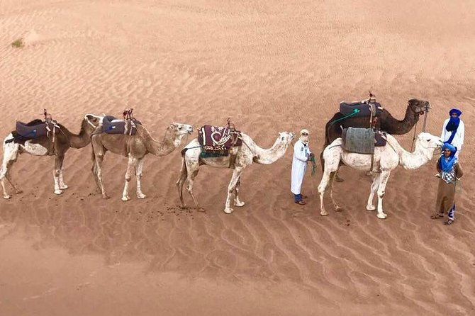 fes to fes 2 days private desert tour