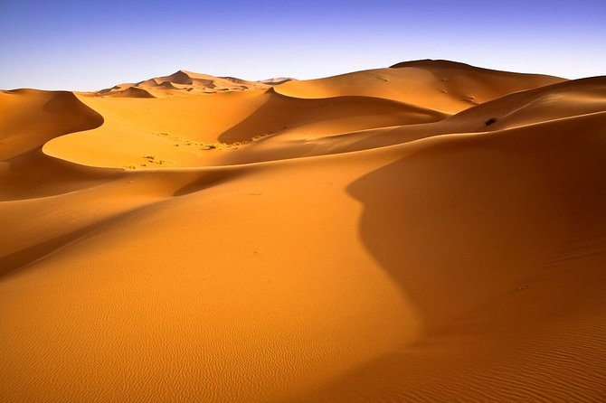 Oasis & Desert - 4 days - Private tour