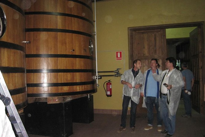 Guided Tour to Ribera del Duero Winery and Wine Tasting from Madrid