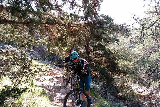Ymittos Bike Safari (15min from town center). FREE TRANSFER to the trails photo 2