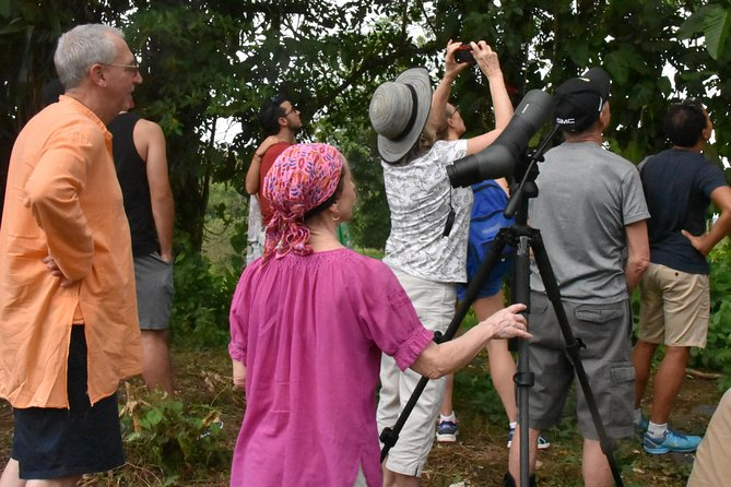 Private Expedition in the Arenal Volcano Region by Costa Rica Nature Guide(VIP) photo 10