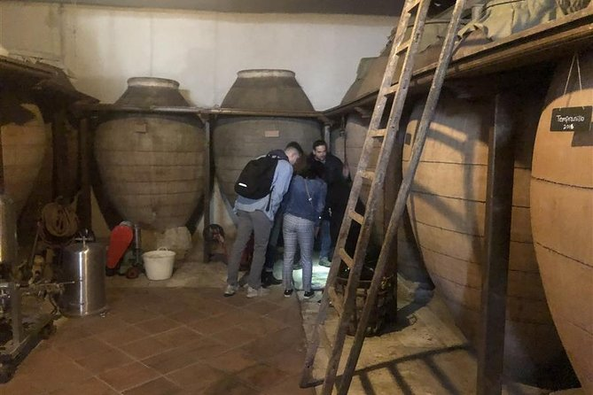 Half day small group wine tour of wineries near Madrid
