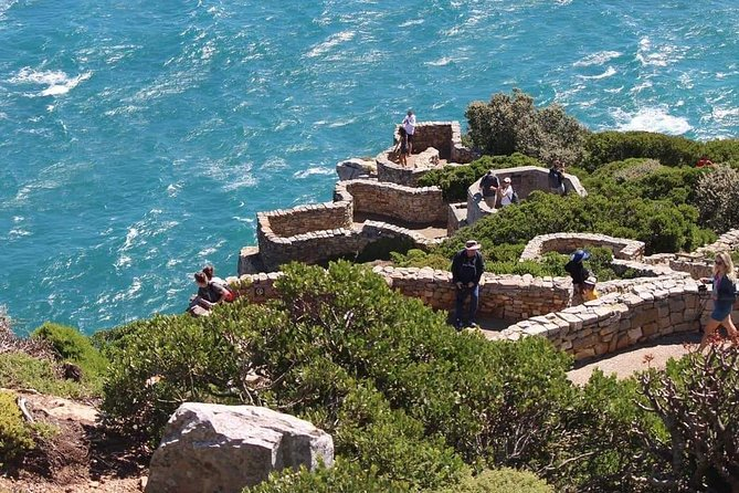 Cape Point & Penguin Explorer Tour