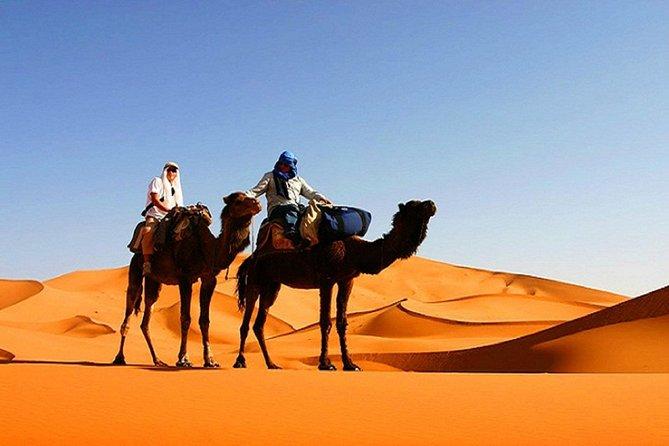 10 Days Tour From Casablanca, Morocco