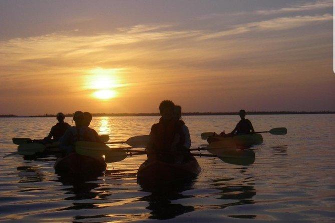 Sunset Kayaking with Bioluminescence Combo tour (Haulover canal) Titusville