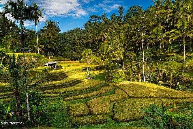 Ubud Bali Best Tour.