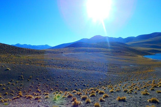 Tours in San Pedro de Atacama. Tatio geysers, Moon Valley, Altiplanic Lagoons.