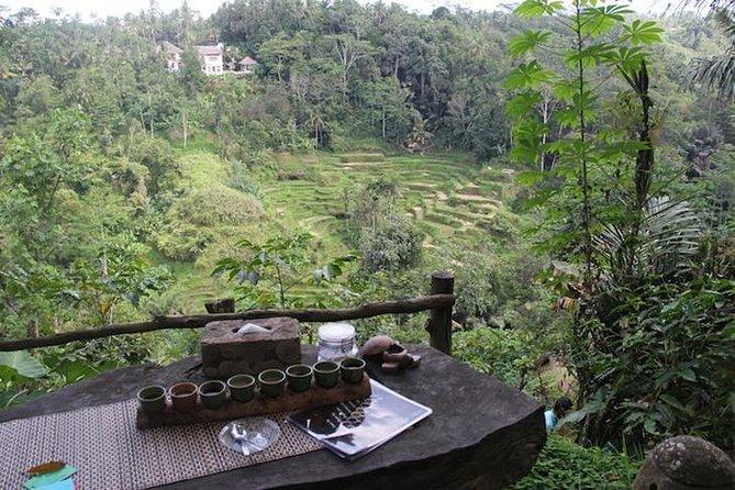 North Bali Tour (Jatiluwih)