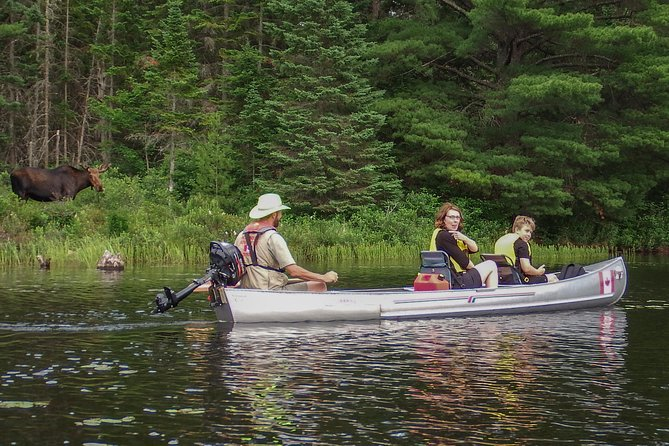 3 Hour VIP Electric Canoe Photography Tour (private, price is for 2 people)