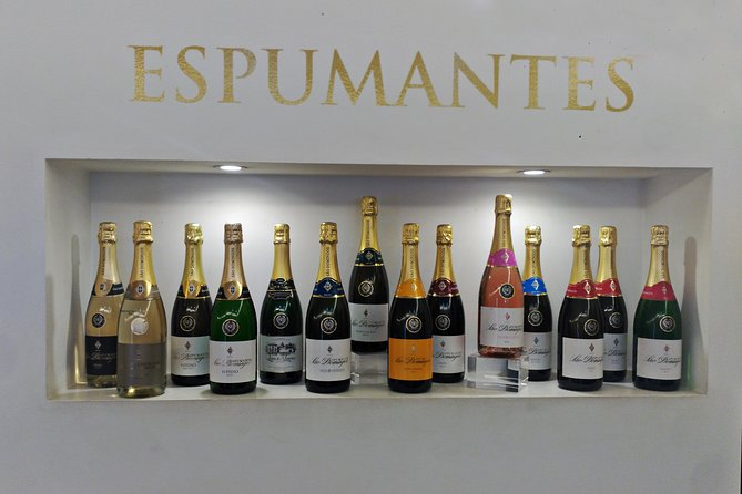 Espumante Winery Tour and Tasting from Porto