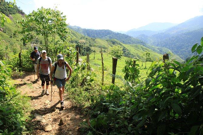 Ciudad perdida 5-Day Trek from Santa Marta