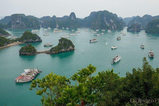 7 Days Hanoi- Ha Long Bay cruise tour & Sapa trekking