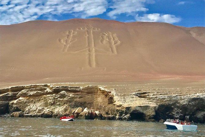 Full Day Paracas & Ballestas Islands