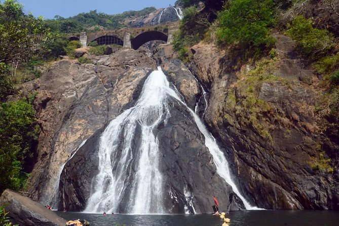 Day Trip to Mollem National Park Including Dudhsagar Falls and Jeep Safari from Goa photo 2
