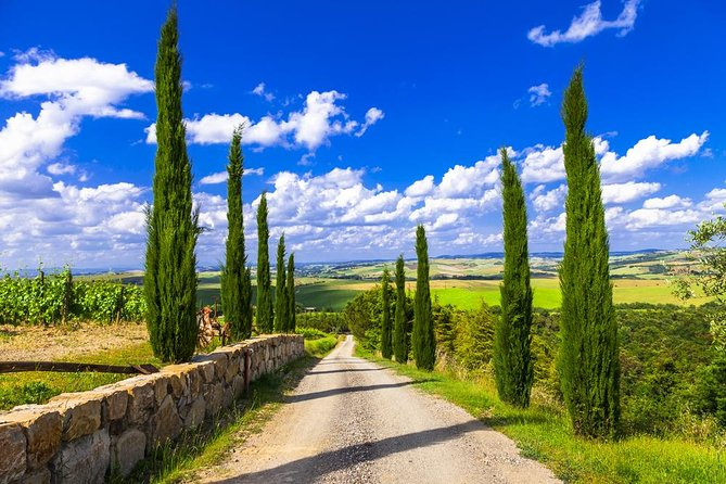 Full day private tour to Chianti wine region from Florence