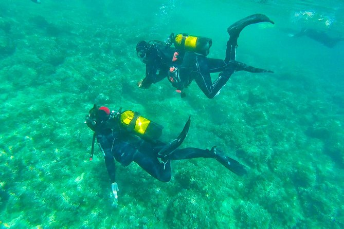 Scuba Diving Beginners 1 dive photo 6