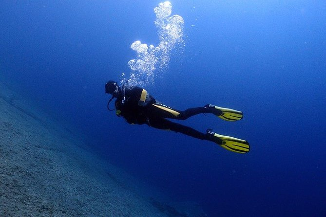 Scuba Diving Beginners 1 dive photo 8