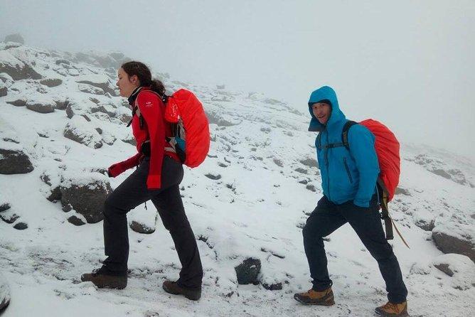 6 Days Lemosho route Climbing Mt. Kilimanjaro