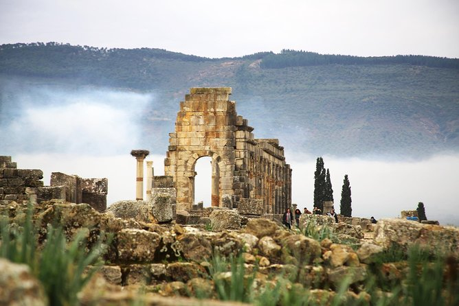 Day Trip from Fez to Meknes ,Volubilis & Mouly Idriss photo 9
