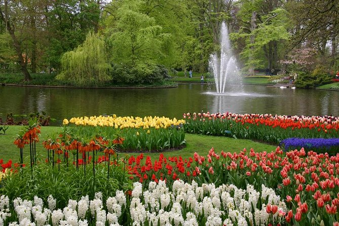 Private Trip to Keukenhof (Tulip garden)
